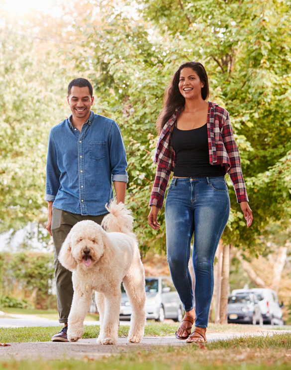 man and woman walking dog in park